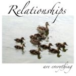 duck-relationships